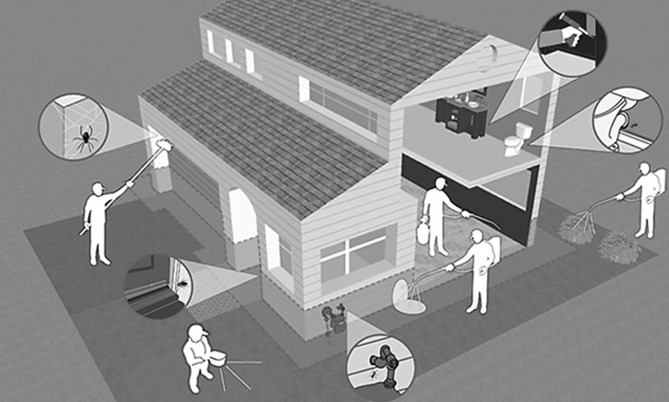 Home Pest Control Service
