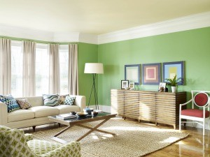 rug-living-room-300x225